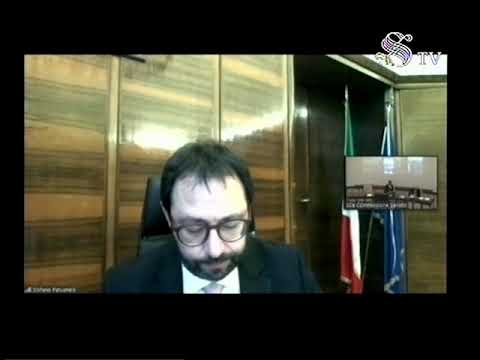 VIDEO: Stefano Patuanelli – audizione Industria, commercio e turismo.