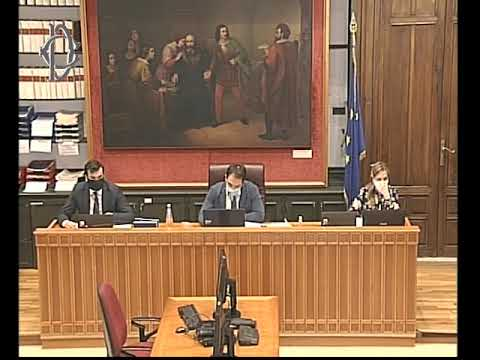 VIDEO: Commissione Affari costituzionali, interrogazioni a risposta immediata
