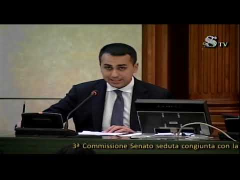 VIDEO: Libia: audizione ministro Di Maio