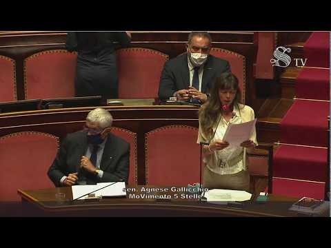 VIDEO: Agnese Gallicchio (M5S) – Intervento aula Senato – 08/07/2020