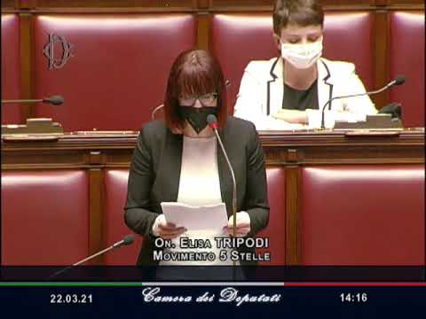 VIDEO: Elisa Tripodi - Intervento aula 22/03/21